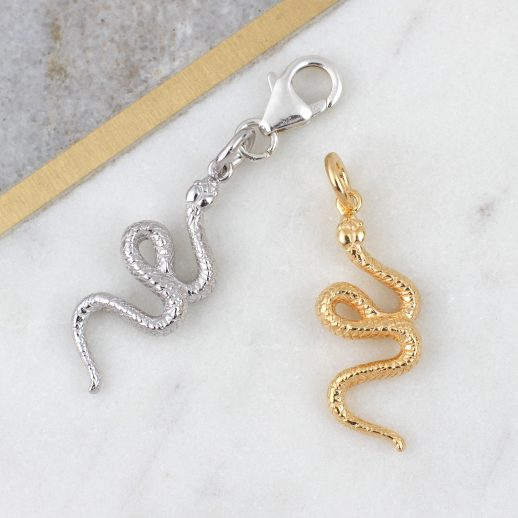 6.SnakeCharms